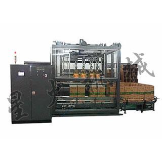 抓取式纸箱装箱机-天津星火机械设备制造公司